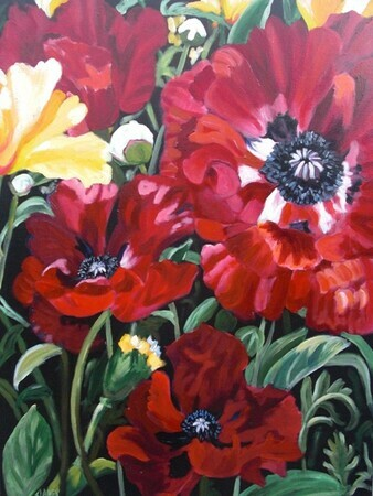 Claire's Poppies