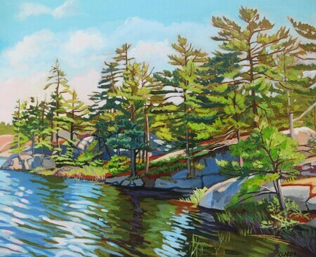 Georgian Bay Island National Park, shoreline study 1